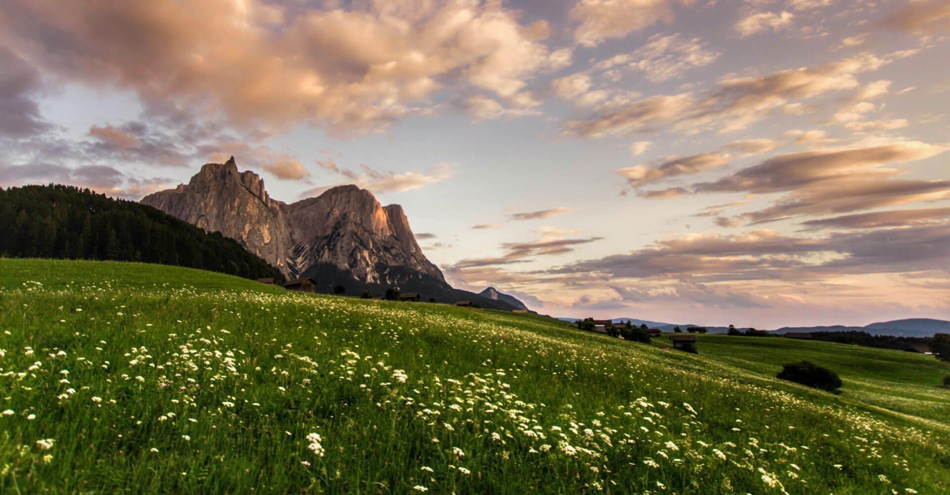 Urlaub Seiser Alm Südtirol